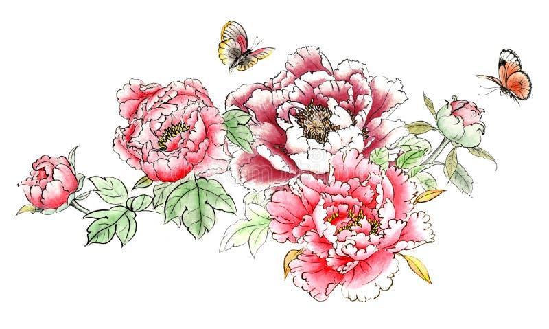 A distinta peônia pintado à mão decorativa lindo tradicional chinesa da tinta floresce ilustração do vetor
