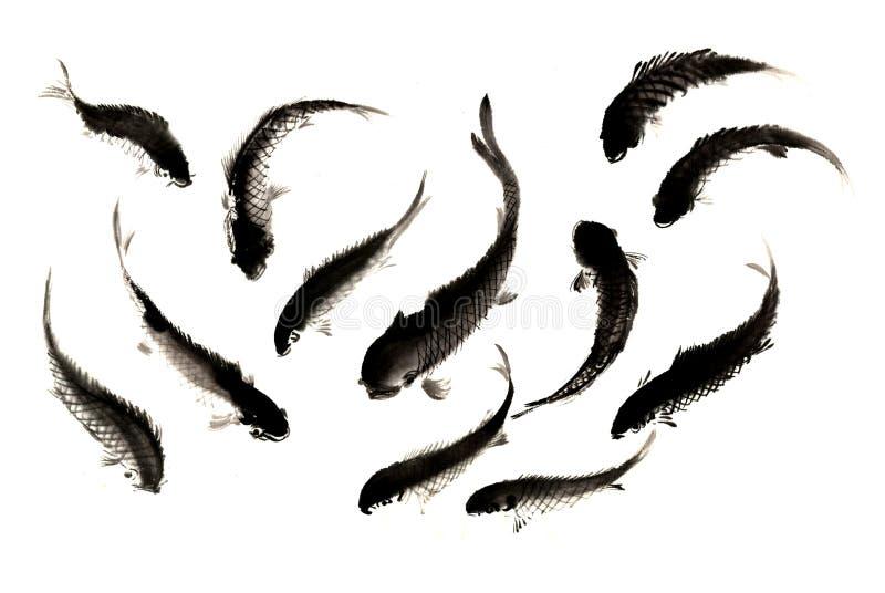Distinta tinta-carpa pintado à mão decorativa lindo tradicional chinesa imagem de stock
