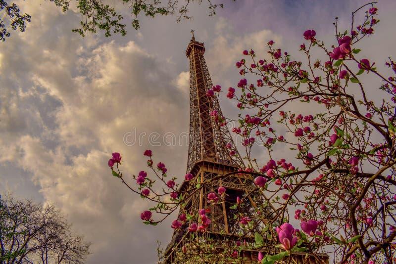 Distinta vista de París de la torre Eiffel fotos de archivo