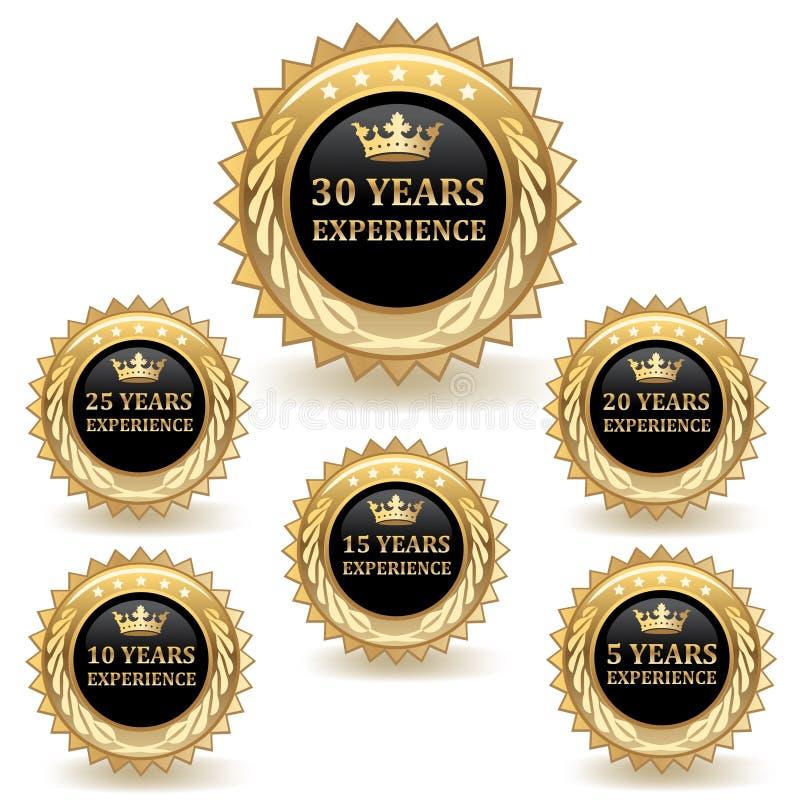 Distintivi di esperienza dell'oro illustrazione di stock
