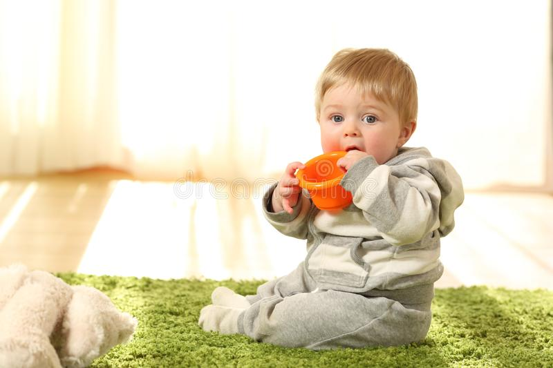 Distracted baby biting a toy. Portrait of a distracted baby biting a toy sitting on the floor at home stock image