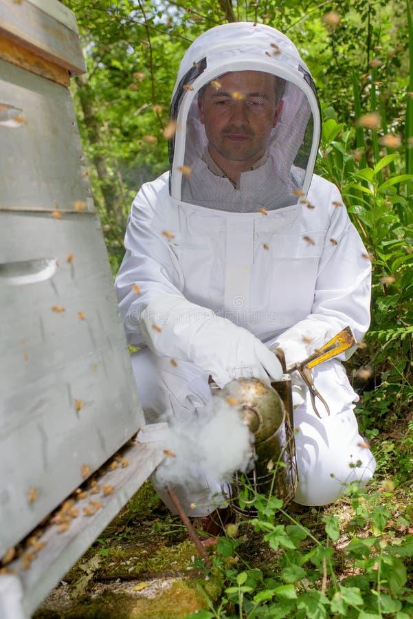 Distrazione dell'ape facendo uso del fumatore fotografia stock libera da diritti