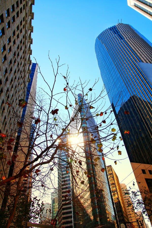 Distretto aziendale finanziario moderno di sogno americano che esamina diritto sulle torri aumentanti ed il grattacielo moderno b fotografia stock