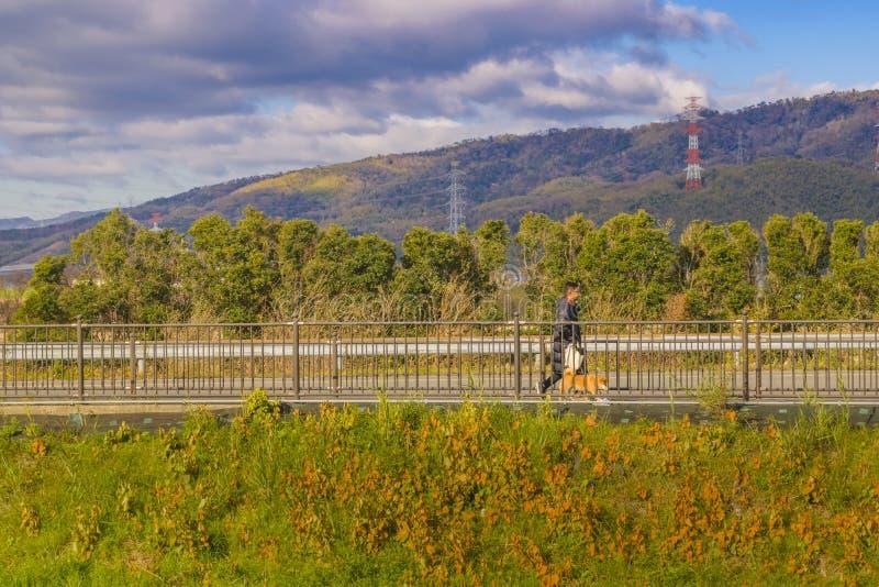 Distretto di Kyoto dal punto di vista del treno della finestra immagini stock