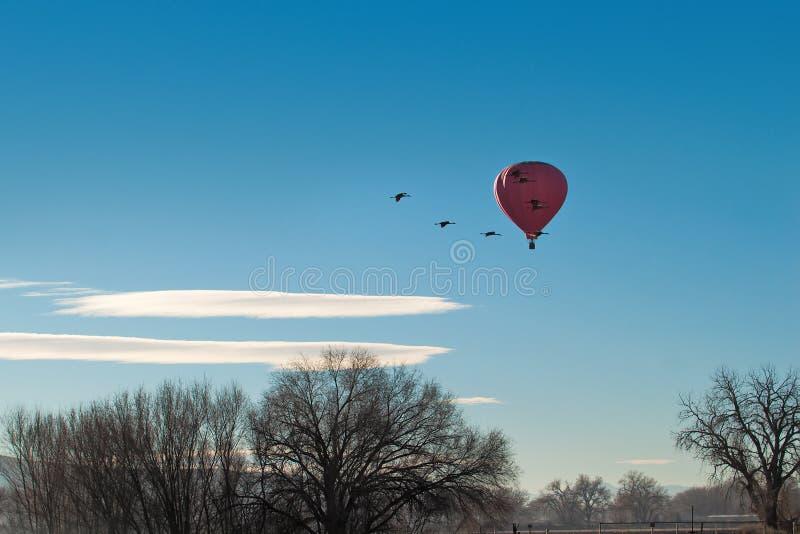 Distribución de los cielos imagen de archivo