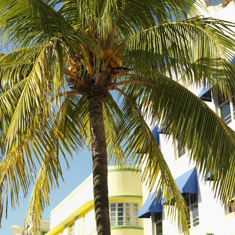 District d'art déco de Miami photos stock