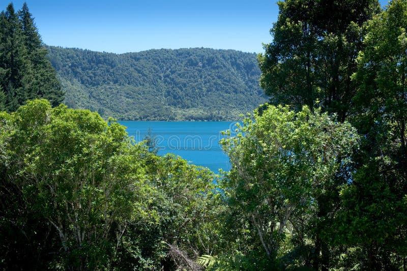 Districto de los lagos Rotorua imagen de archivo libre de regalías