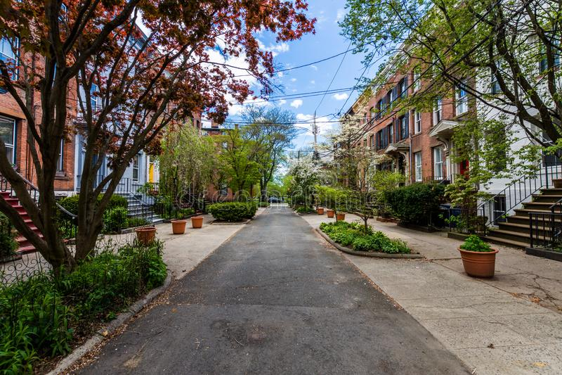 Distrito histórico da rua da corte no quadrado de Wooster em New Haven fotos de stock royalty free