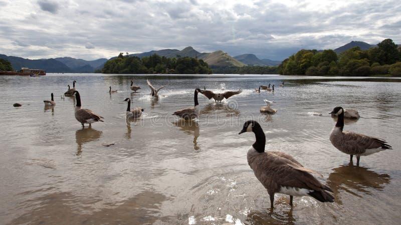 Distrito Inglaterra do lago da área de Ullswater e de Keswick imagens de stock royalty free