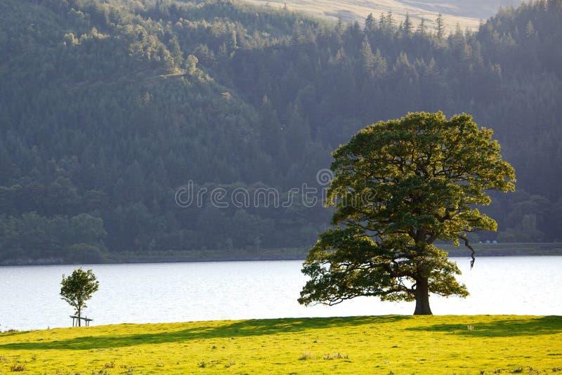 Distrito Inglaterra do lago pelo por do sol fotografia de stock royalty free