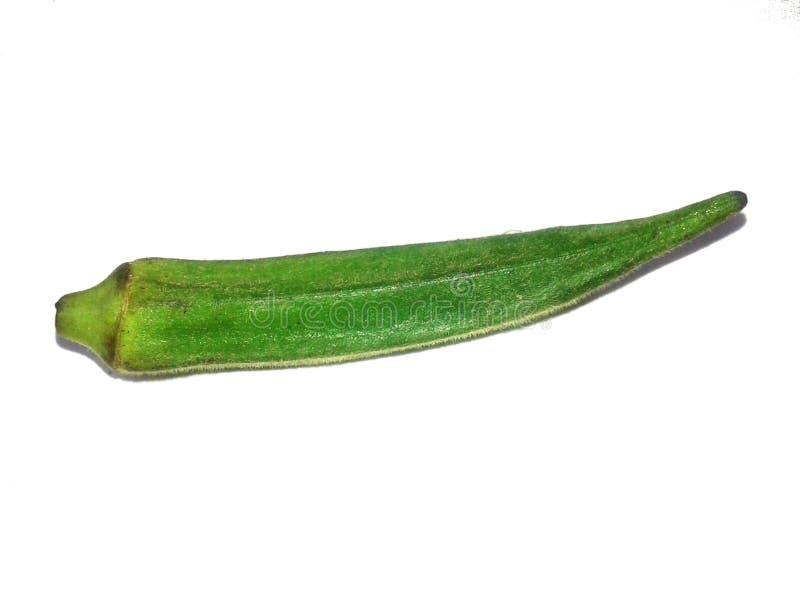 Dit is de vinger van de beeld groene dame met witte achtergrond royalty-vrije stock afbeelding