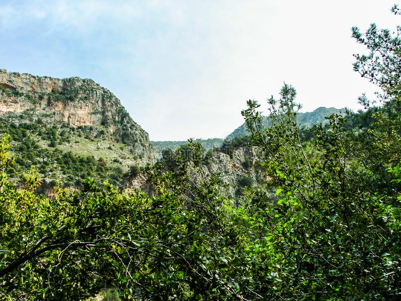 Dit is een Vallei in hoogtepunt het Noord- van Libanon van bergen, waterval en holen royalty-vrije stock foto's