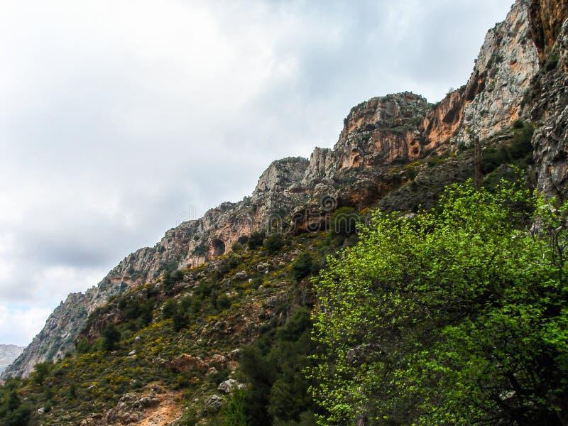 Dit is een Vallei in hoogtepunt het Noord- van Libanon van bergen, waterval en holen stock foto