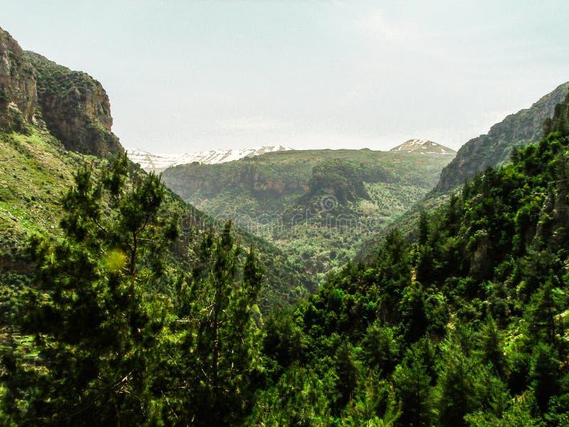 Dit is een Vallei in hoogtepunt het Noord- van Libanon van bergen, waterval en holen royalty-vrije stock fotografie