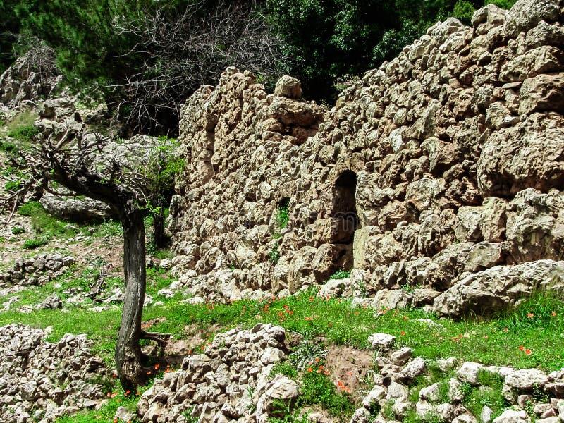 Dit is een Vallei in hoogtepunt het Noord- van Libanon van bergen, waterval en holen royalty-vrije stock foto