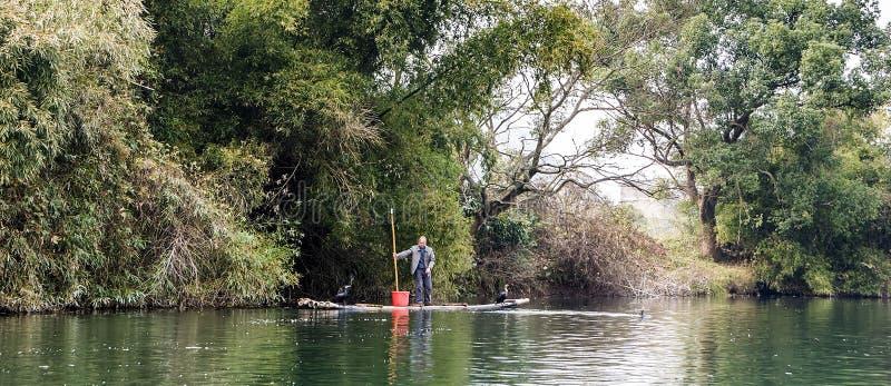 Dit is een visser en zijn twee aalscholvervogels royalty-vrije stock foto's