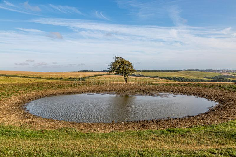 Ditchling Beacon Dew Pond. A dew pond on the top of Ditchling Beacon in Sussex, on a sunny summers evening stock image