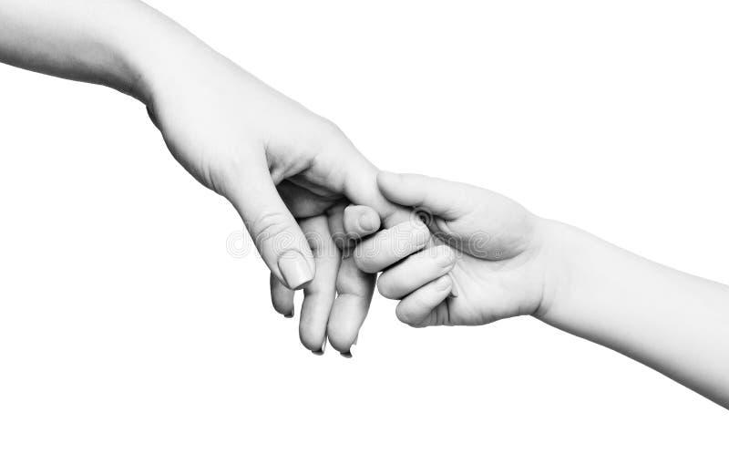 Dito della madre della tenuta della mano del bambino su fondo bianco fotografia stock libera da diritti