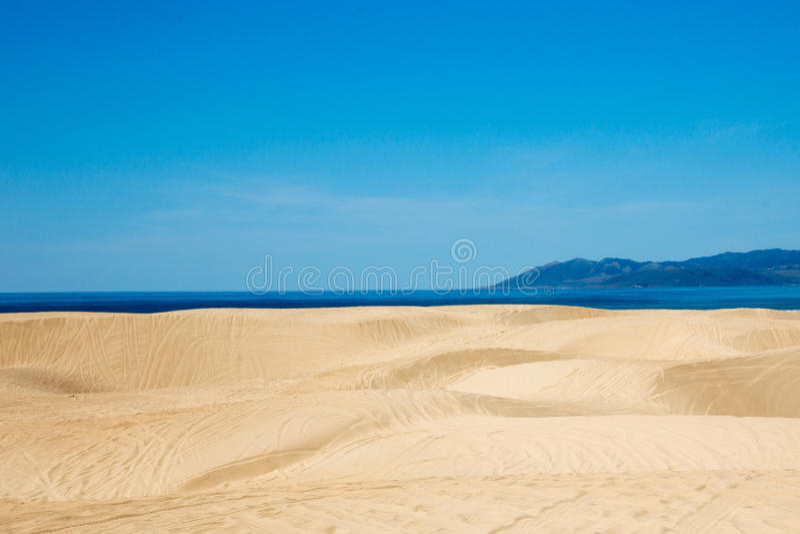 diun horyzontu kosa kurshskaya Russia piasek kroczy rozciąganie fotografia royalty free