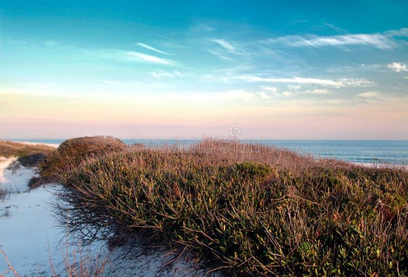 diuna plażowy ucieczkę spokojna zdjęcia royalty free