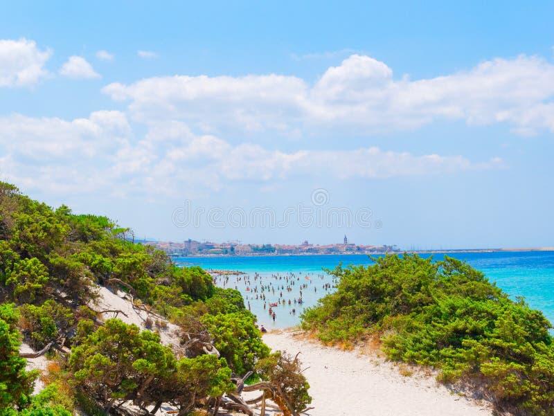 Diuny i plaża w Alghero Sardinia, Włochy obraz royalty free