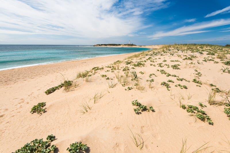 Diuny w naturalnej rezerwie Zahara De Los Atunes, Hiszpania zdjęcie royalty free