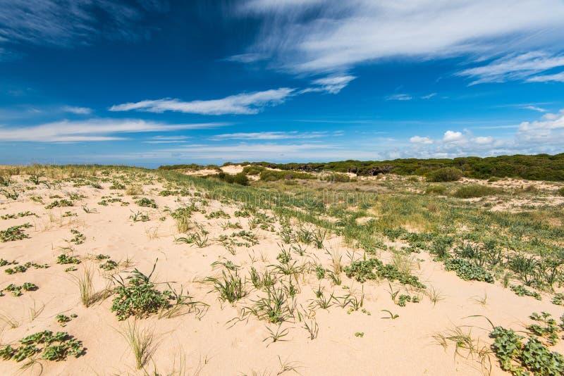 Diuny w naturalnej rezerwie Zahara De Los Atunes, Hiszpania zdjęcia stock