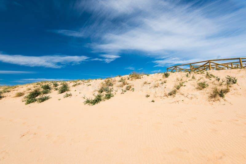 Diuny w naturalnej rezerwie Zahara De Los Atunes, Hiszpania zdjęcie stock