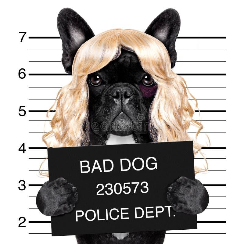 Free Diva Chic Mugshot Stock Images - 85133334