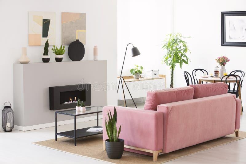 Divan rose de velours se tenant en vraie photo du style scandinave l photos stock