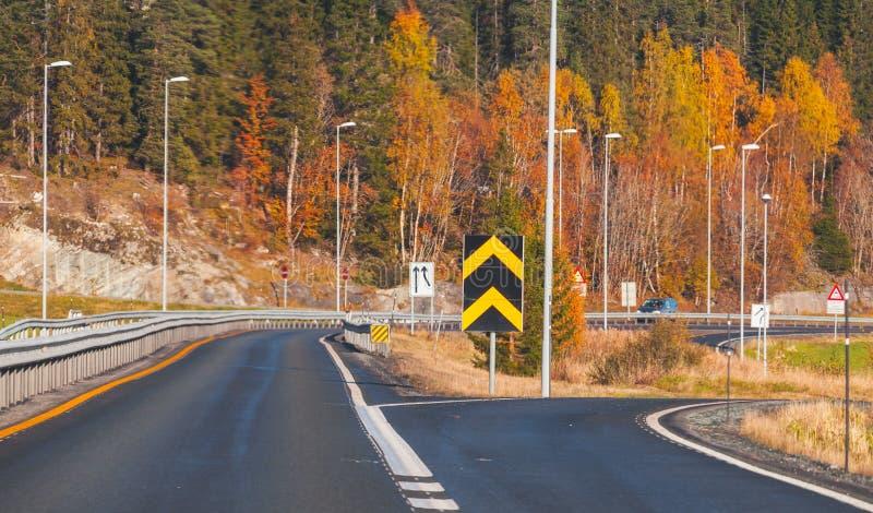 Divarication сельской норвежской дороги стоковые изображения rf