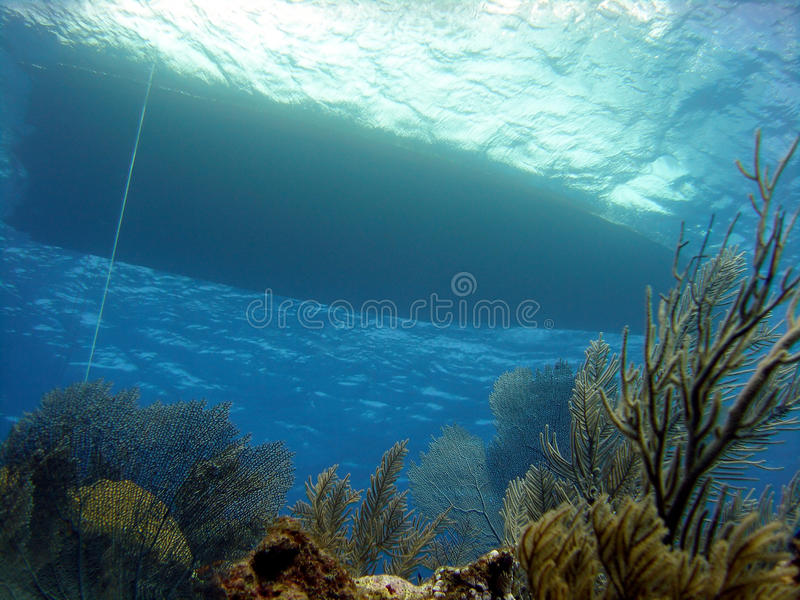 Download Dive Boat And Reef Royalty Free Stock Image - Image: 13000786
