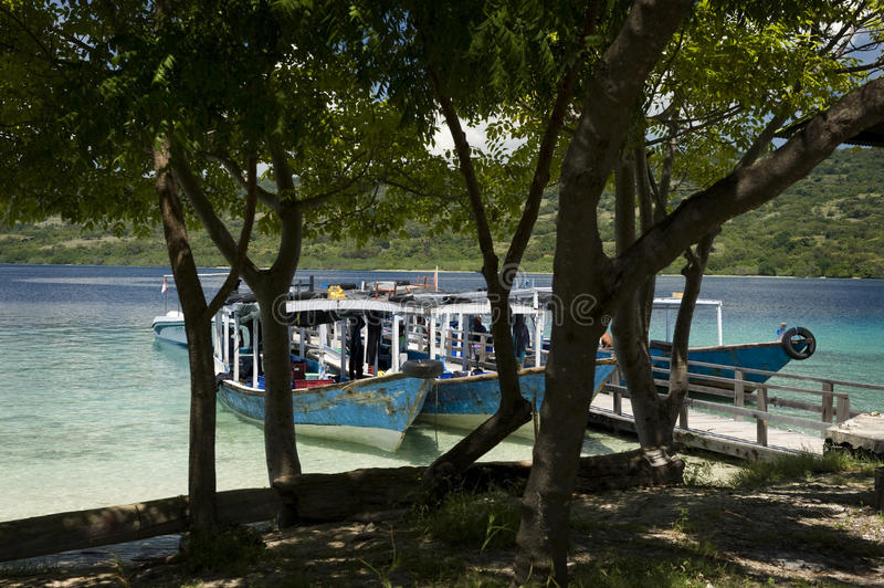 Dive Boats at Menjangan Island. Menjangan Island is a small island, located 5 miles to the north-west of Bali island, is known for it's healthy colorful reef and stock photo