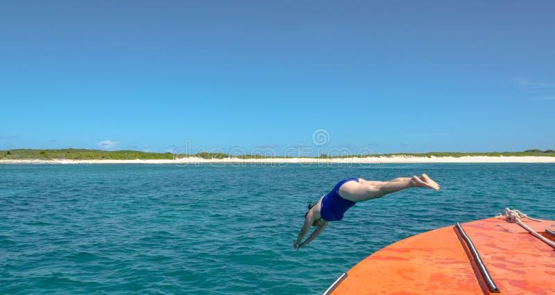 Dive In - la donna si tuffa nel mar dei Caraibi fotografia stock libera da diritti