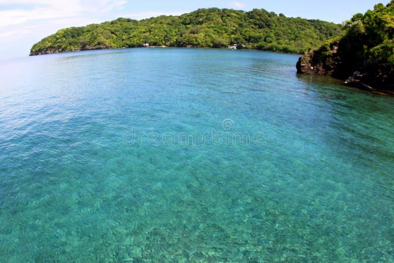 Dive Paradise arkivfoton