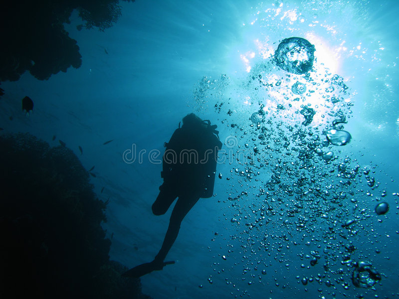 Diver 02 Stock Image