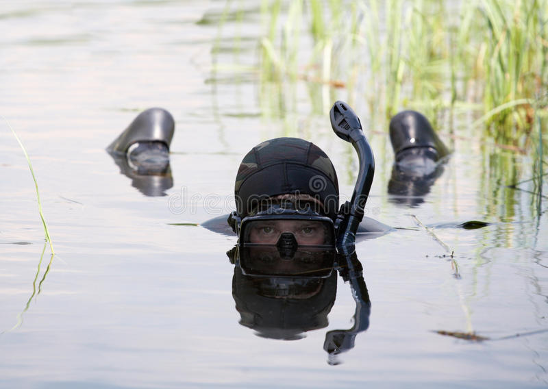 Diver. Spearfishing competition, little lake near Kovrov town, Russia stock photography