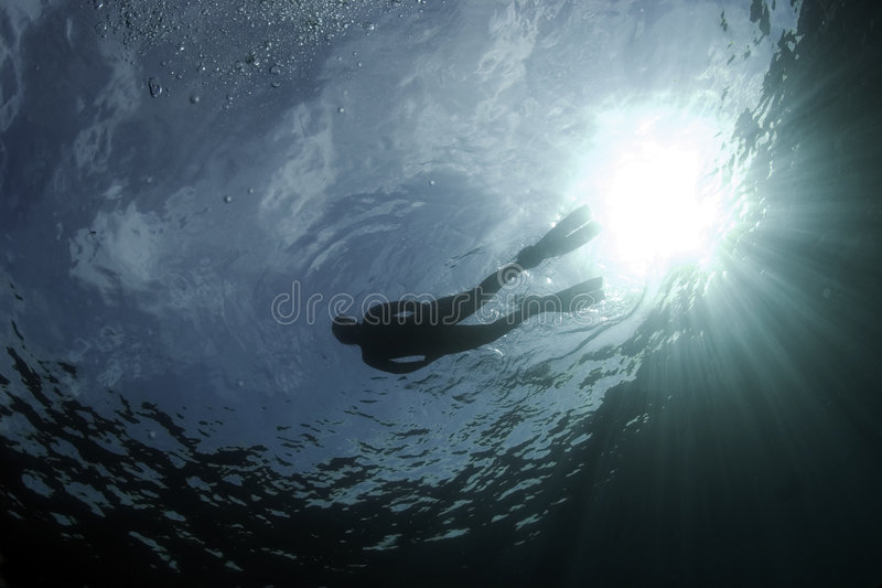 Diver 3. Photo was made in Croatia in the year 2006 royalty free stock photos