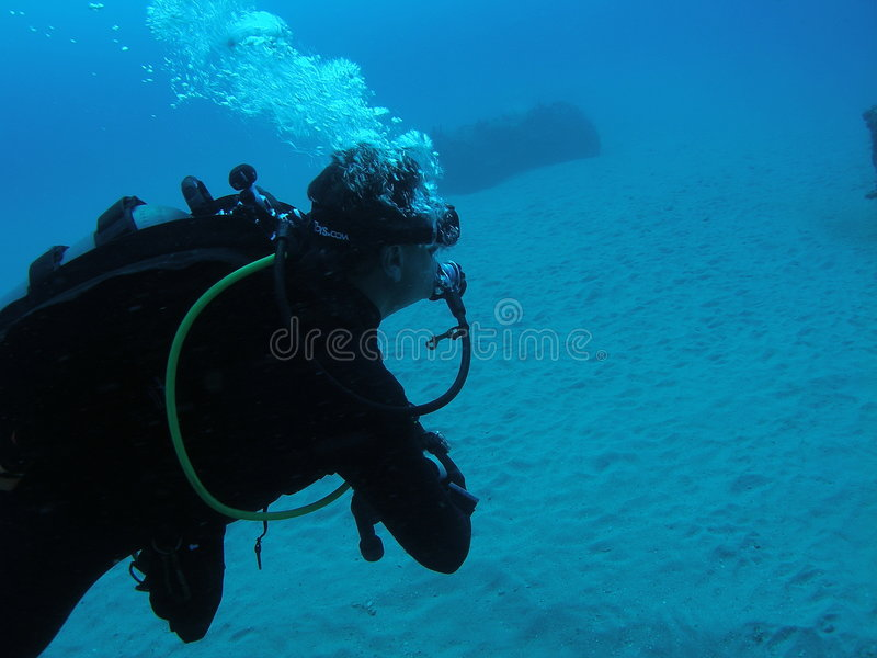 Diver royalty free stock photos