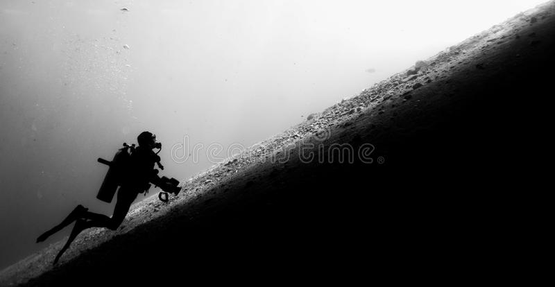 Diver Ascending stock photography
