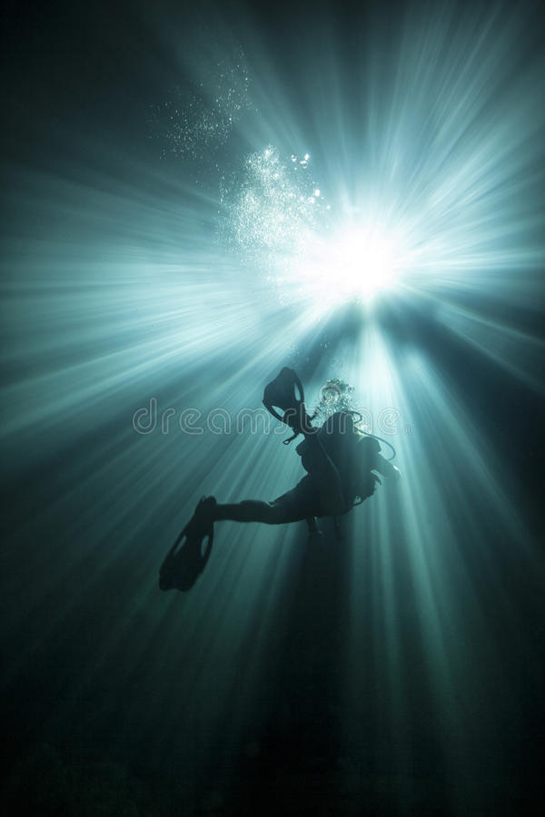 Diver Ascends Into The Light stock photography