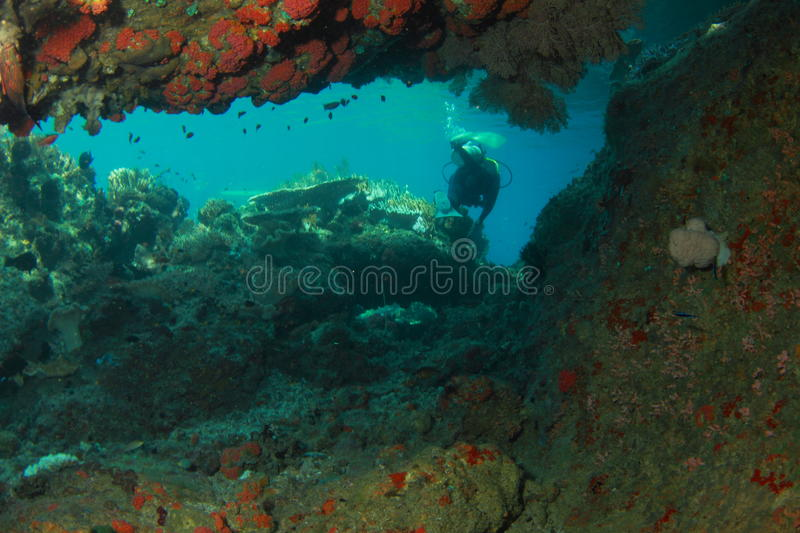 Download Diver behind the cave stock photo. Image of undersea - 23558840