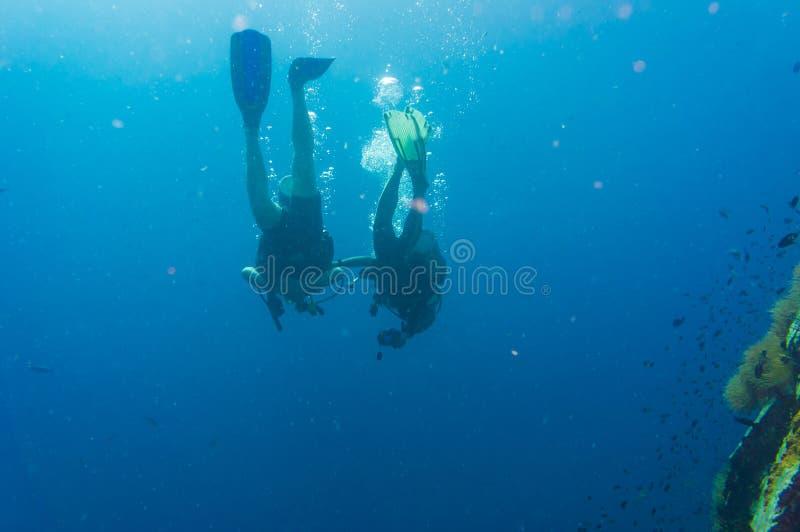 Diver blue water scuba diving at Shark island of Koh tao. Pacific sea reef ocean stock image