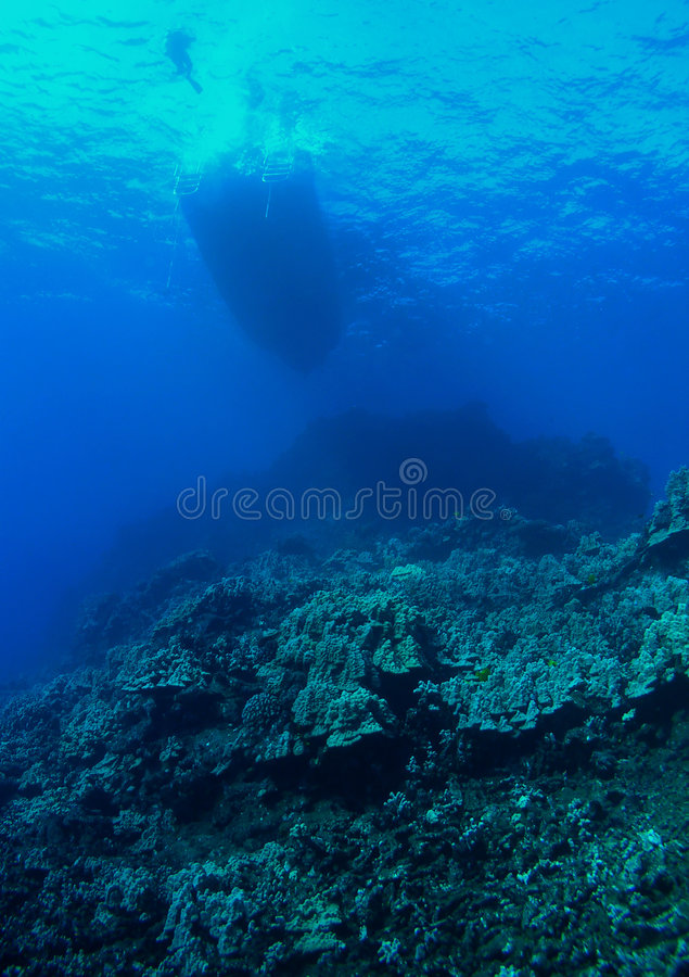 Diver Boat and Reef. Diver gets ready to descend into the Deep royalty free stock photos