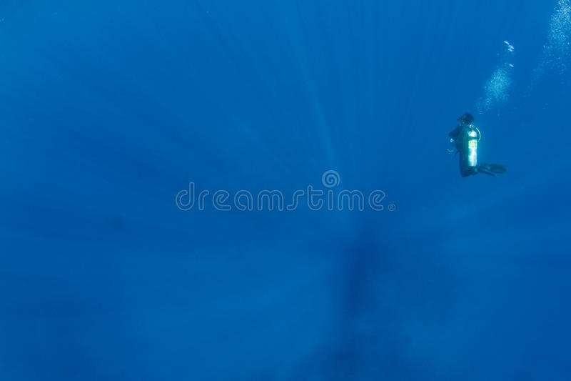Diver in depth with sunbeams. Scuba diver in the ocean and sunbeams in the water stock image
