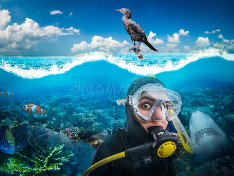 Diver in diving gear gasps under water stock photos