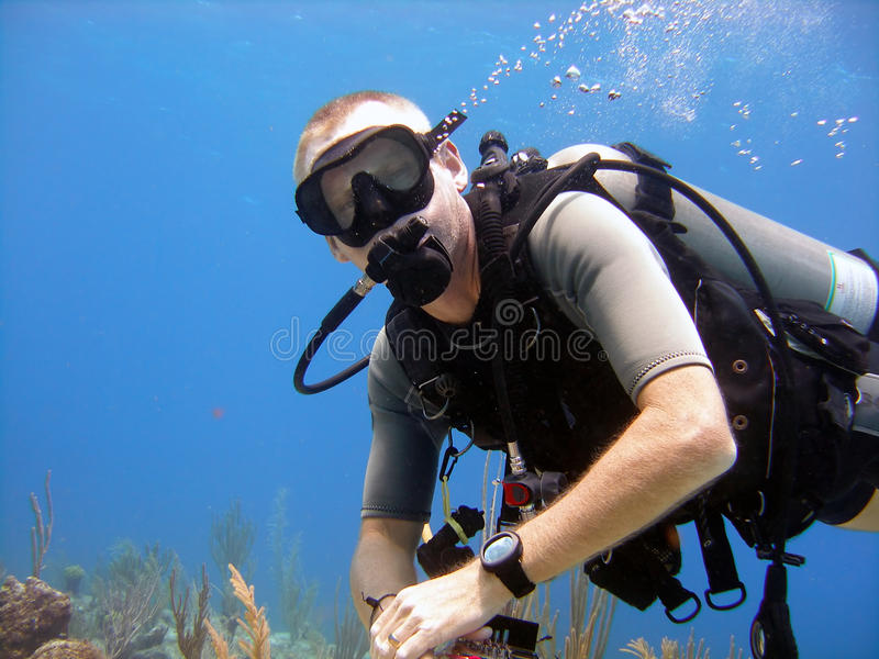 Diver enjoys a sunny dive royalty free stock images