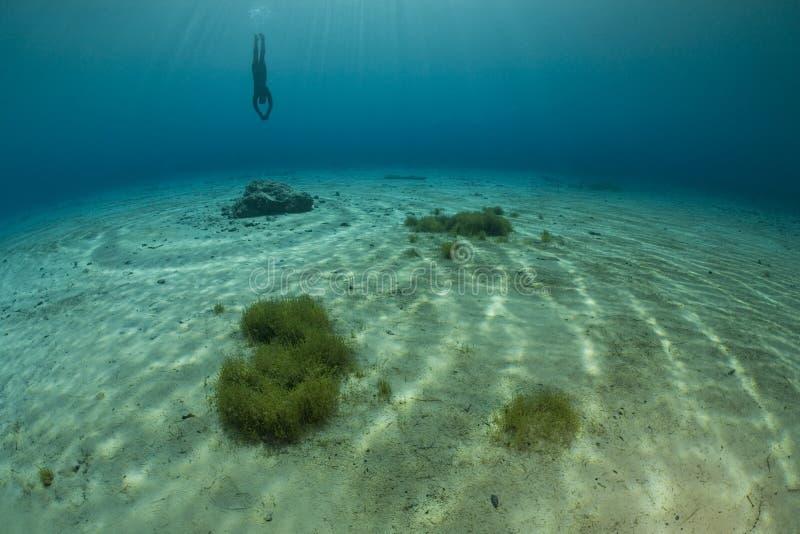 Diver exploring lake bottom stock photos