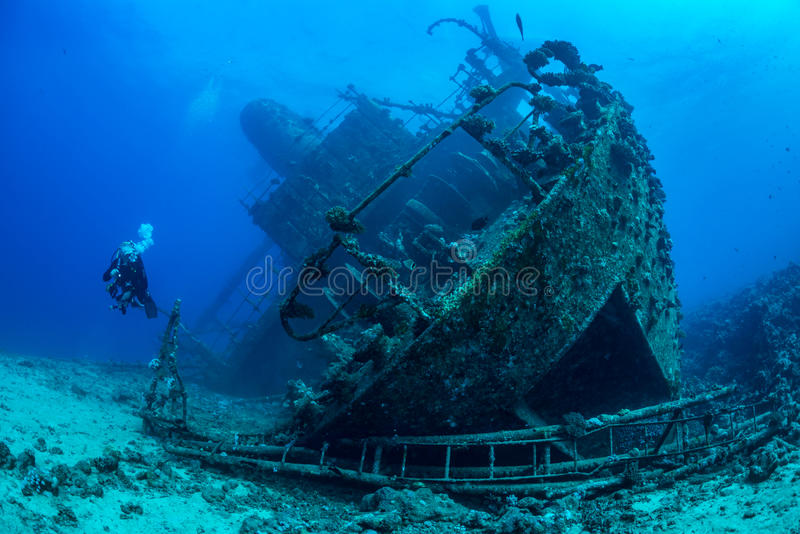 Diver exploring Red Sea wreck. Single diver explores the wreck of Giannis D, which sank in 1983 in Abu Nahas, Red Sea, Egypt. Young coral establishing a new reef stock photo