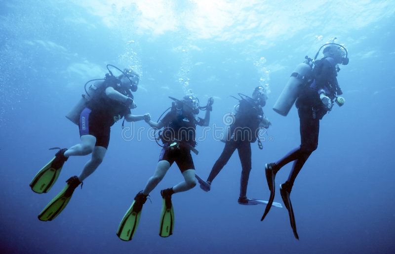 Diver Group Royalty Free Stock Photos